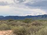 10 Acres Bird Of Paradise Trail - Photo 6