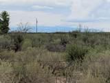 10 Acres Bird Of Paradise Trail - Photo 9
