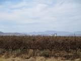 13154 Highway 181 - Photo 13