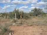 3258 Navajo Trail - Photo 5