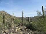 4320 Cush Canyon Loop - Photo 10