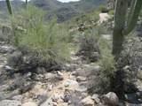 4320 Cush Canyon Loop - Photo 14