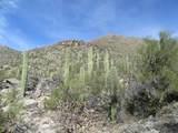 4320 Cush Canyon Loop - Photo 5