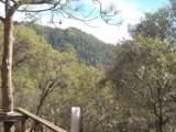 9845 Willow Canyon - Photo 10