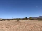 10567 Running Coyote Trail - Photo 30