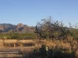 27425 Old Mesquite Way - Photo 12