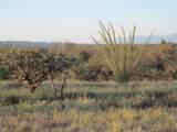 27425 Old Mesquite Way - Photo 13
