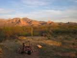 27425 Old Mesquite Way - Photo 15