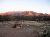 27425 Old Mesquite Way - Photo 16