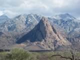 27425 Old Mesquite Way - Photo 3