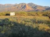 27425 Old Mesquite Way - Photo 6