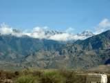 27425 Old Mesquite Way - Photo 7
