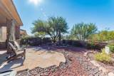 13209 Silver Cholla Place - Photo 24