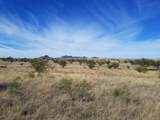 13355 Beatty Ranch Road - Photo 9