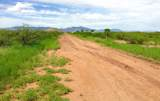 30 Ac Doe Ranch Road - Photo 33