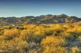 14231 Giant Saguaro Place - Photo 23