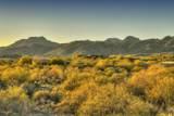 14231 Giant Saguaro Place - Photo 24