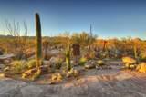 14231 Giant Saguaro Place - Photo 28