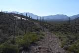 5909 El Camino Del Cerro - Photo 4