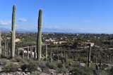 5909 El Camino Del Cerro - Photo 8