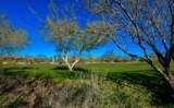 916 Tortolita Mountain Circle - Photo 1