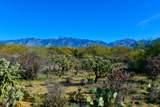 916 Tortolita Mountain Circle - Photo 10
