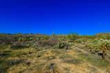 916 Tortolita Mountain Circle - Photo 11