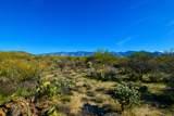 916 Tortolita Mountain Circle - Photo 12