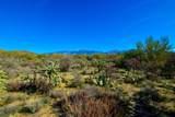 916 Tortolita Mountain Circle - Photo 13