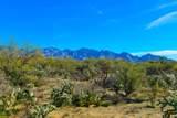 916 Tortolita Mountain Circle - Photo 14