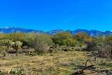 916 Tortolita Mountain Circle - Photo 4