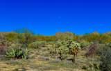 916 Tortolita Mountain Circle - Photo 7