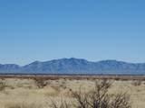 20 Acres Hwy 191 - Photo 3