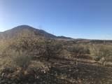 356 Camino Armadillo - Photo 1
