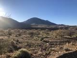 356 Camino Armadillo - Photo 4