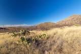 20625 Marauders Trail - Photo 15