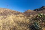 20625 Marauders Trail - Photo 16