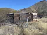 20625 Marauders Trail - Photo 4