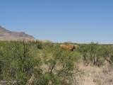 36.96ac Blacktail Trail - Photo 1