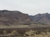 36.96ac Blacktail Trail - Photo 2
