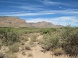 36.96ac Blacktail Trail - Photo 3