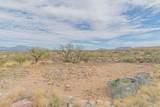 13430 Copper Chief Trail - Photo 11