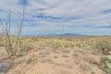 13430 Copper Chief Trail - Photo 13