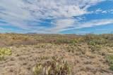 13430 Copper Chief Trail - Photo 16