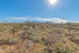 13430 Copper Chief Trail - Photo 18