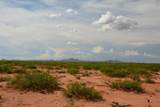 TBD Tombstone Trail - Photo 15