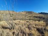 Mesquite Mesa Trail - Photo 2