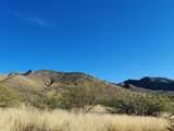 Mesquite Mesa Trail - Photo 4