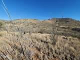 Mesquite Mesa Trail - Photo 9