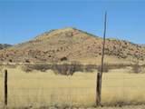 778 Pearce Road - Photo 41